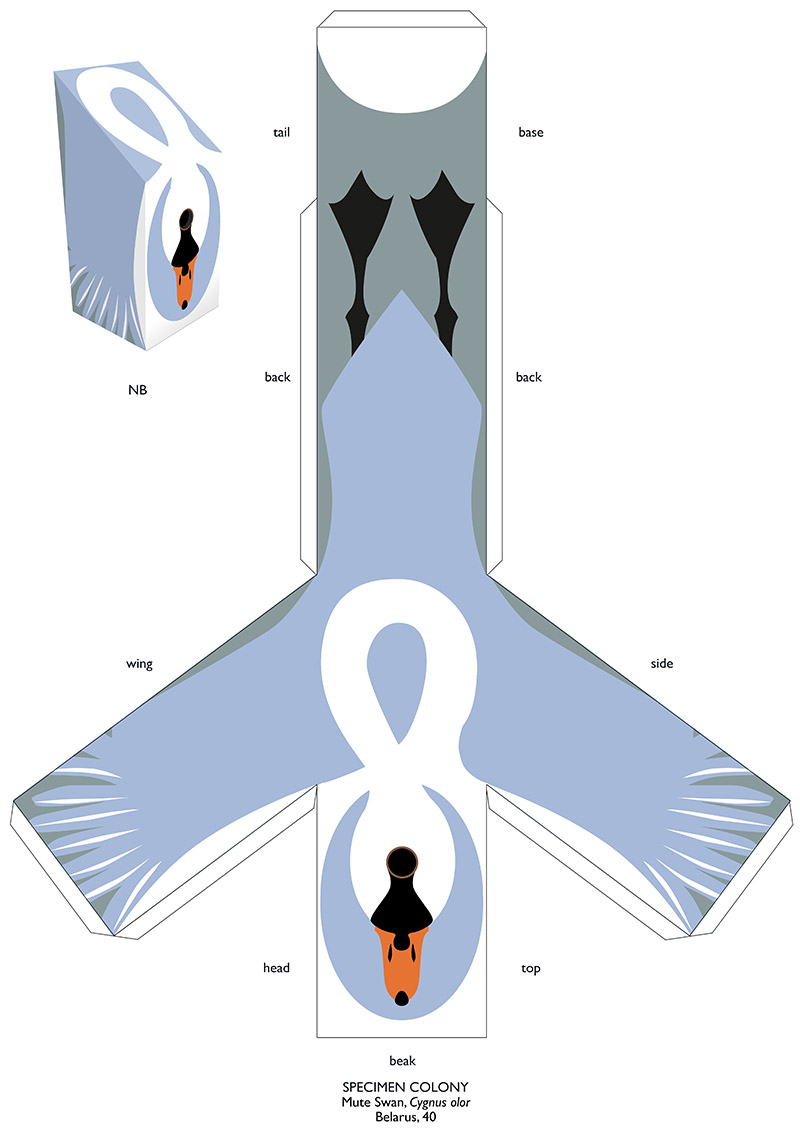 Schema Swan with tabs