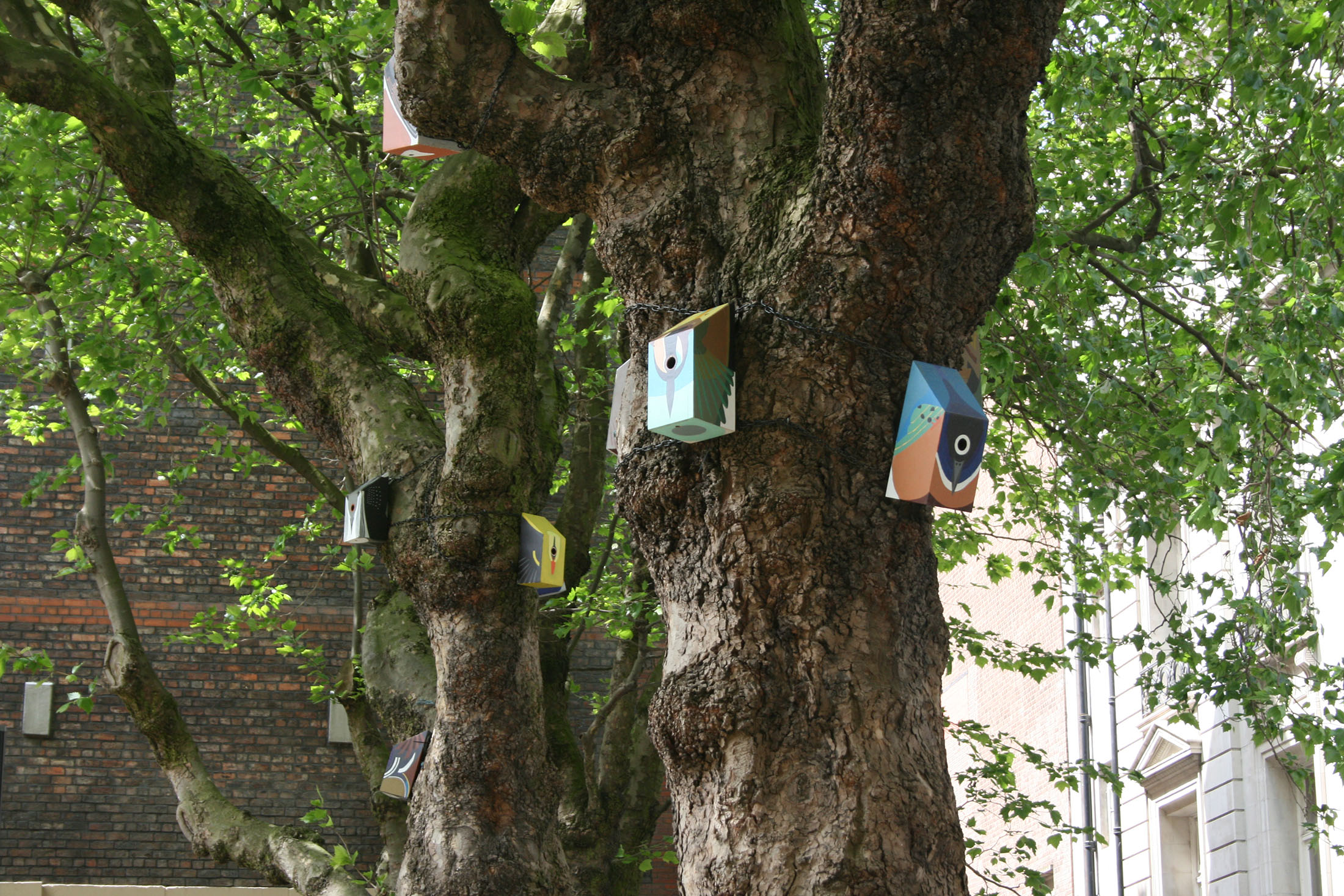 Nestboxes Liverpool 2