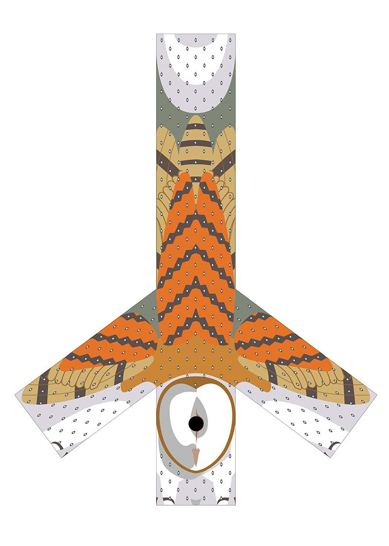 Owl Schema